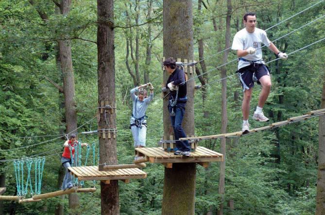Adventure Park Tree Climber Visit Luxembourg