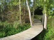 cycle path de l attert (pc 12) petange photo 4