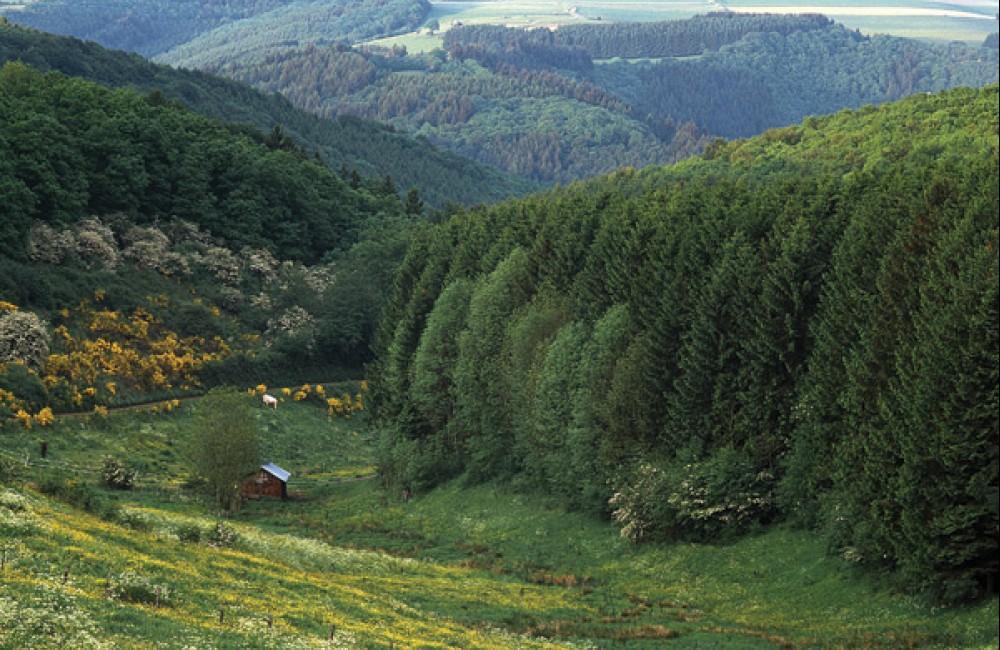 fahrradweg de l ouest (pc 17) noerdange foto 5