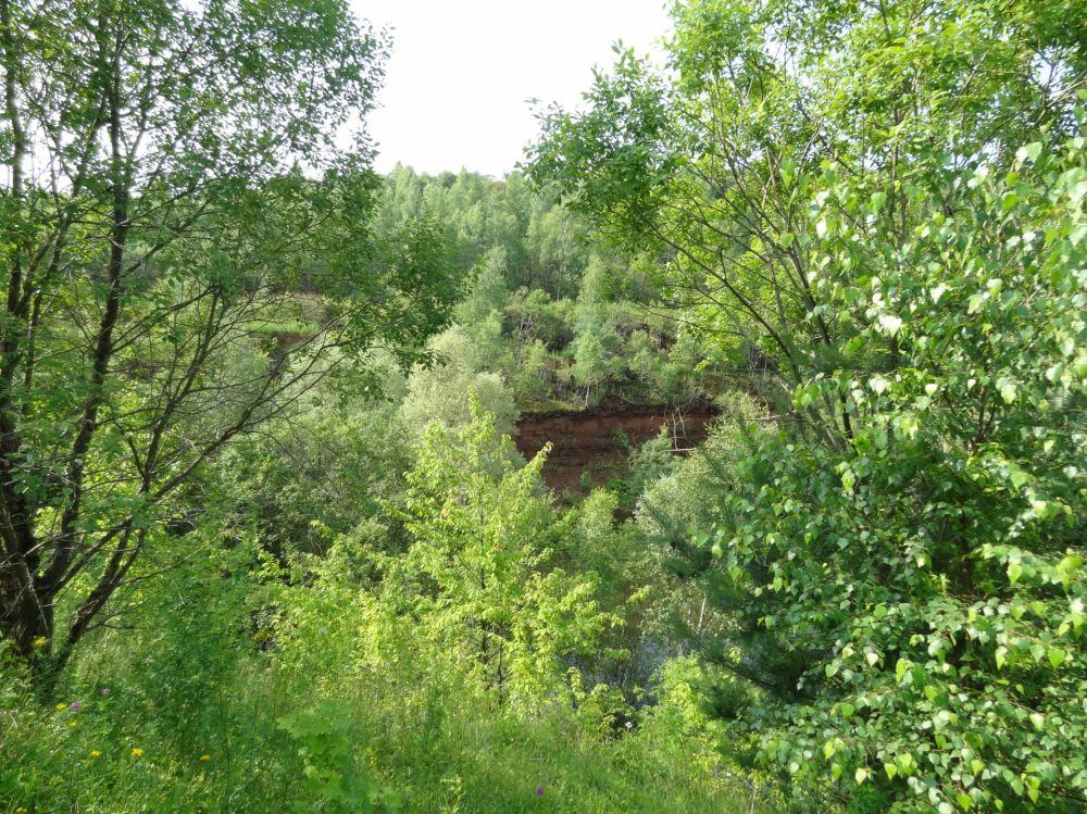 Nature reserve Haard, Hesselbierg, Staebierg
