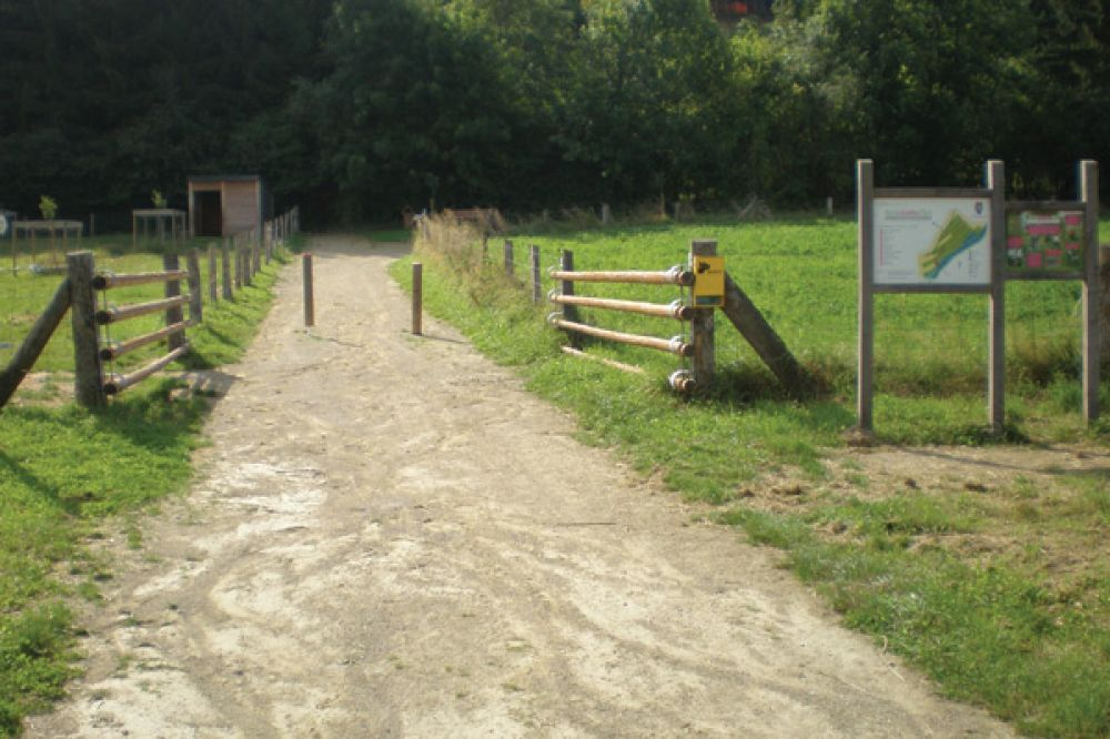 mtb trail bettendorf  reisdorf