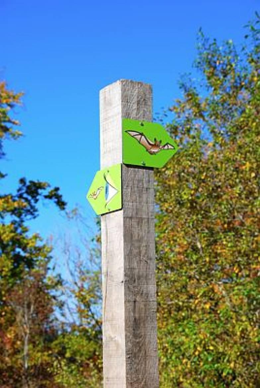 le sentier natura 2000 ellergronn esch sur alzette photo