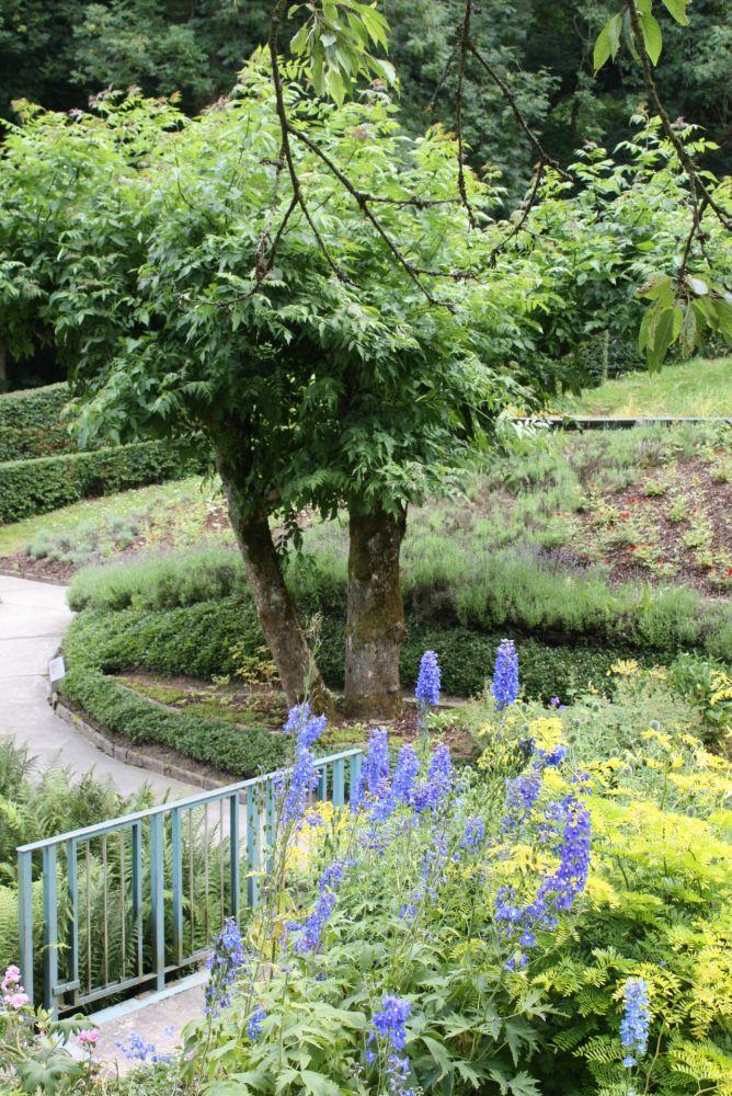 jardin de wiltz 07 2013 49
