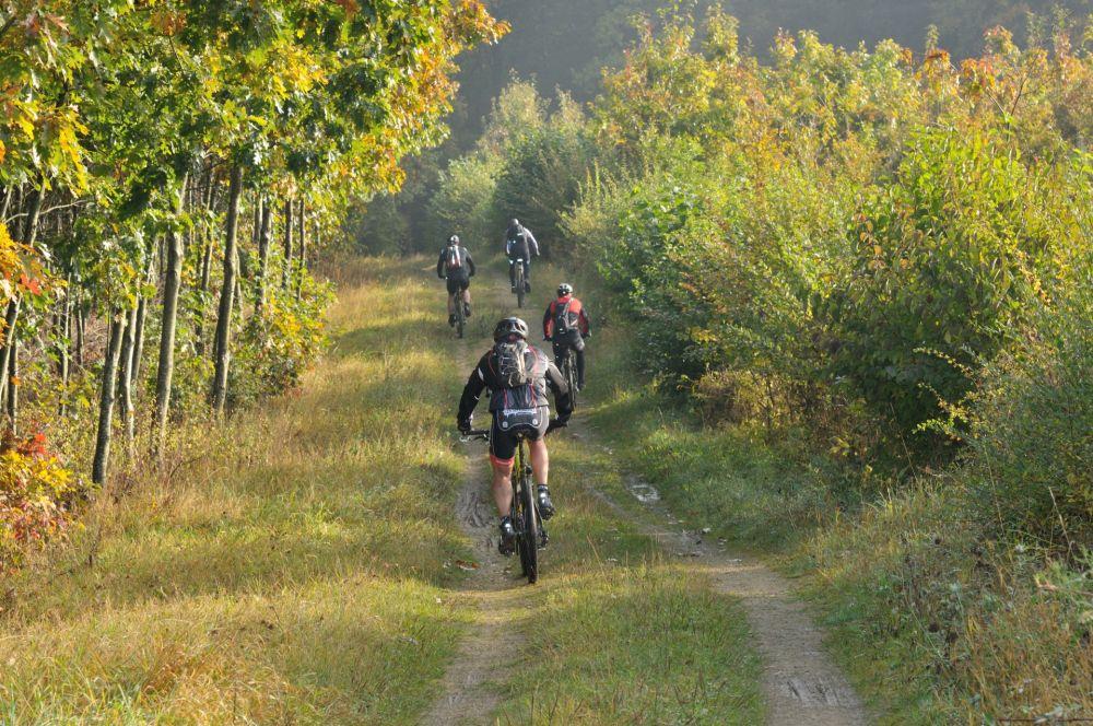 mountainbiking wiltz