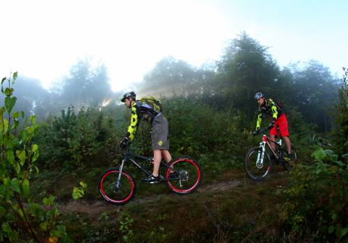 mountainbiking wiltz