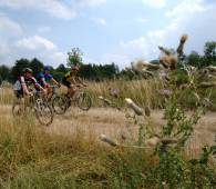 mountainbiken winseler