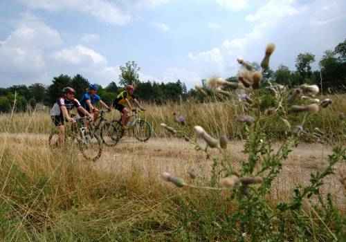 mountainbiking winseler