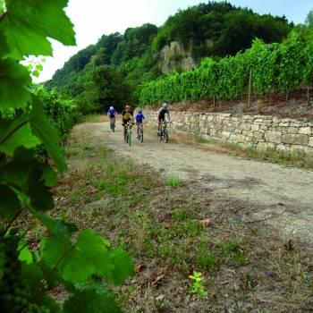 mountainbiking manternach