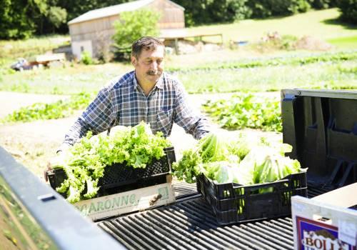 jean diederich buschdorf vegetable