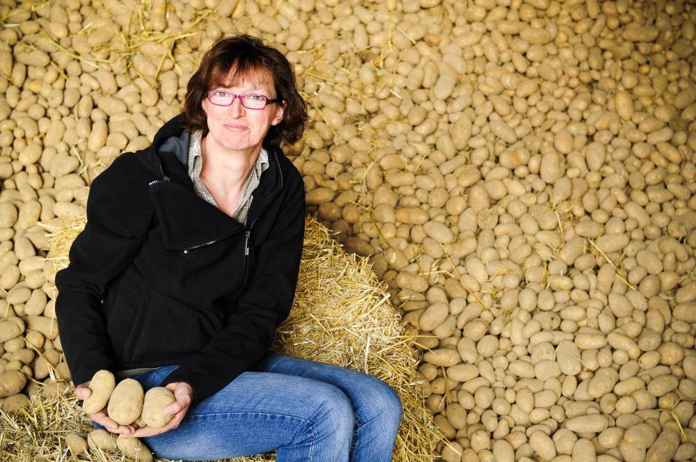 a steffen s kartoffeln