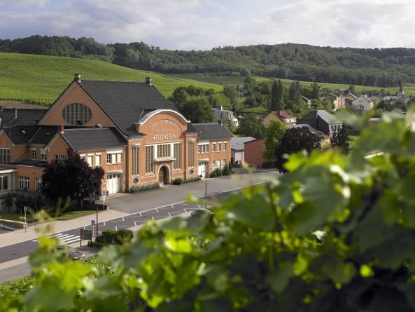 domaines vinsmoselle caves de wellenstein