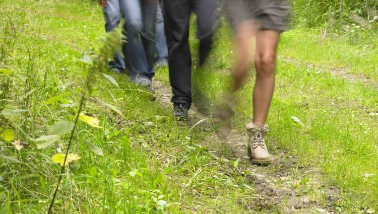 youth hostels trail 08