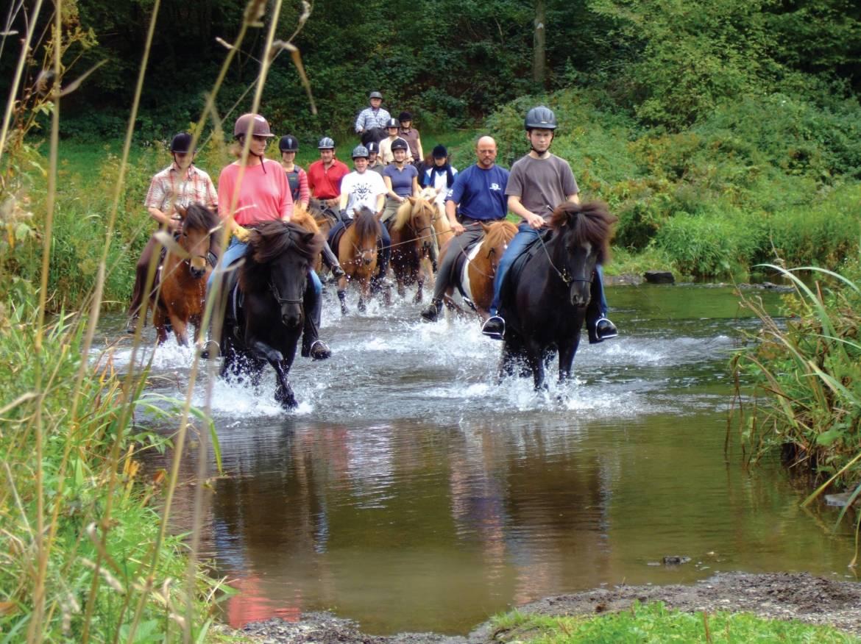 le parc naturel de la haute sure a cheval
