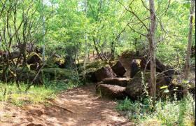 op der haard dudelange nature reserve naturelle 36