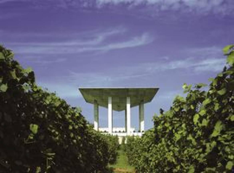 33 hettermillen domaine viticole cep dor hors tour