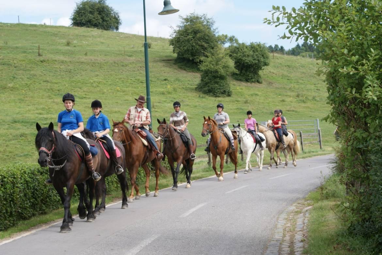 horseride tour 01  drei taler tour 24 km
