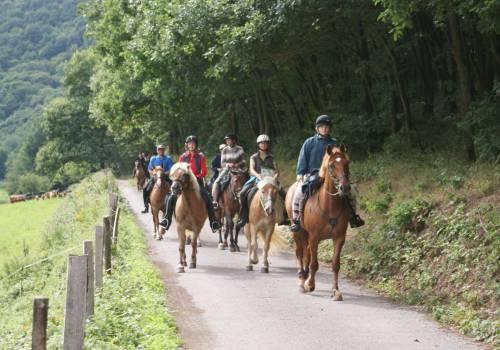 paardrijden tour 02 winzer & brenner rundtour 24 km