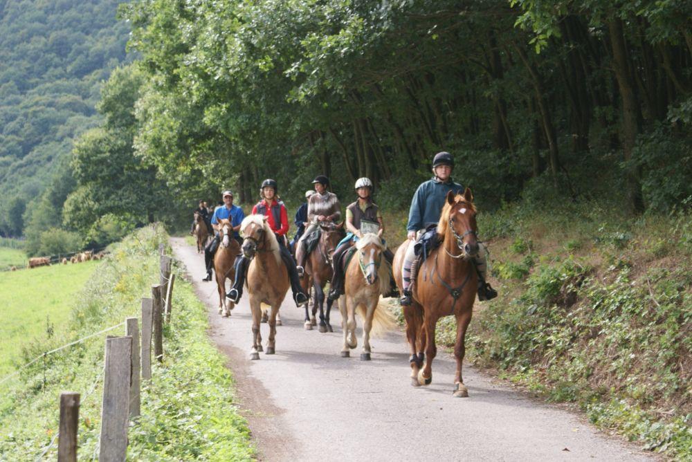 horseride tour 02  winzer & brenner rundtour 24 km