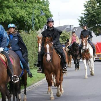 horseride tour 03 zwischen mosel und sauer 24 km