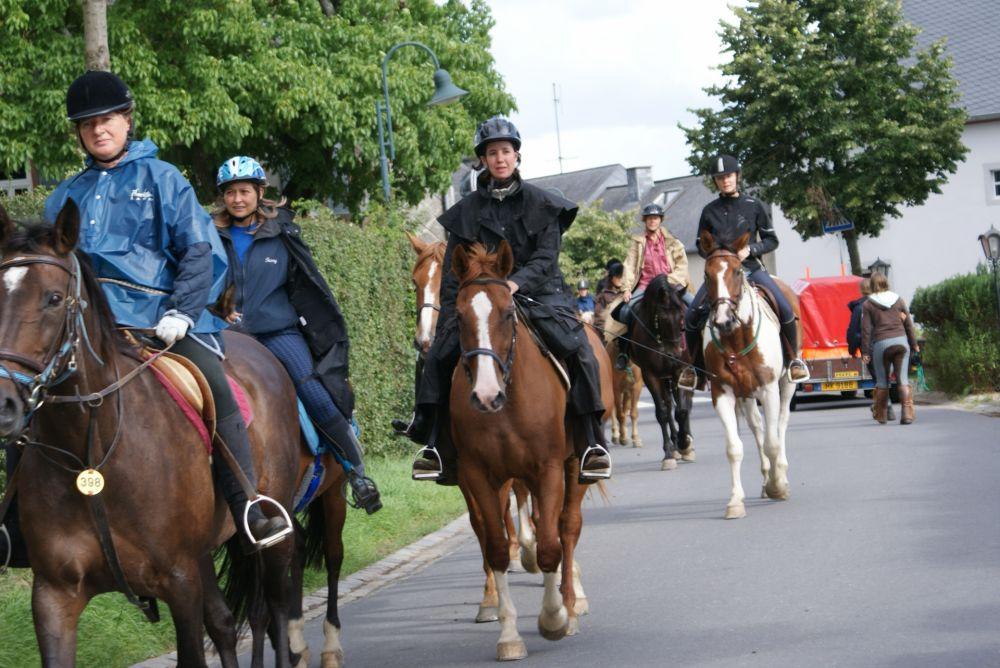 horseride tour 03 zwischen mosel und sauer 24 km visit luxembourg. Black Bedroom Furniture Sets. Home Design Ideas