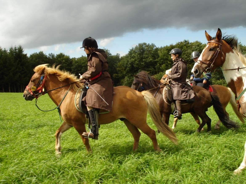 horseride tour 04  wengerten & bongerten rundtour 13,5 km