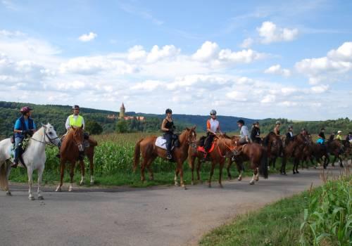 horseride tour 07 miselerland tour 21 km