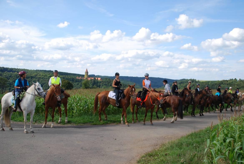 paardrijden tour 07 miselerland tour 21 km