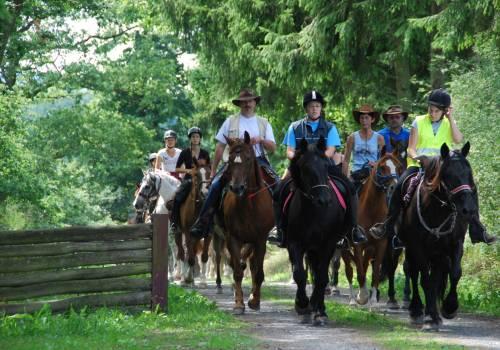 horseride tour 08 ein tor zum luxemburger westen 19 km