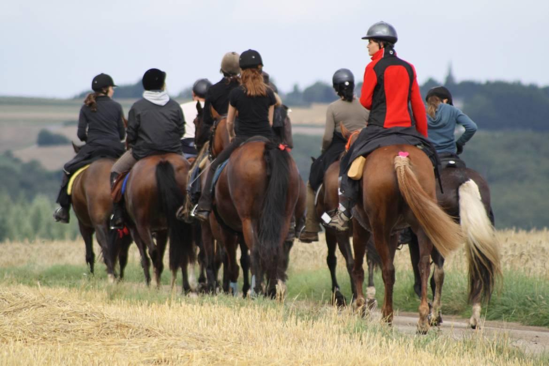 horseride tour 09 schlosser tour 20km