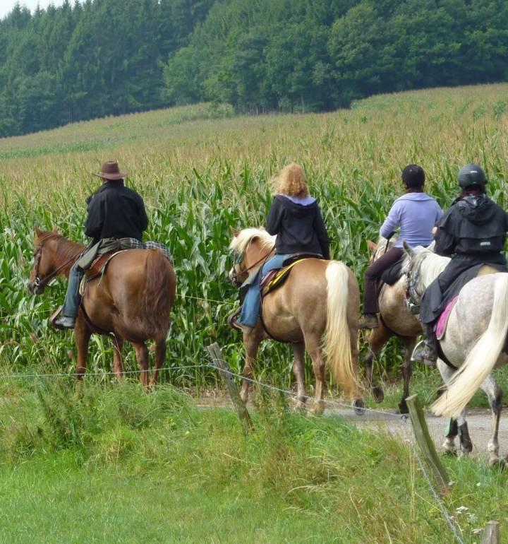 horseride tour 17 beim nachbar eifel 26km