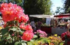 sanem ambiance jardins ort sud 8