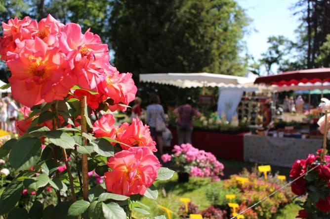 March hebdomadaire dudelange redrock region for Ambiance jardin sanem