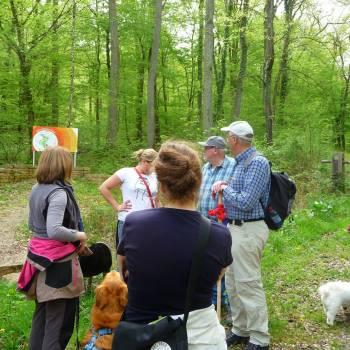 naturwaldreservat grouf schengen
