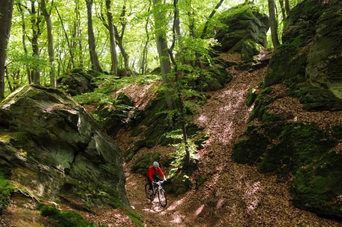 MTB trail Berdorf - Beaufort