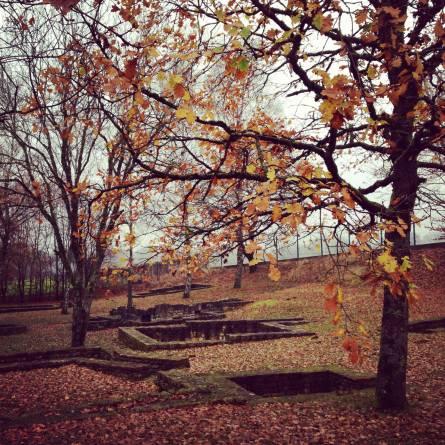 titelberg automne