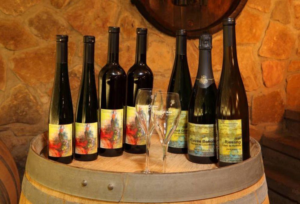 kox benoit vin