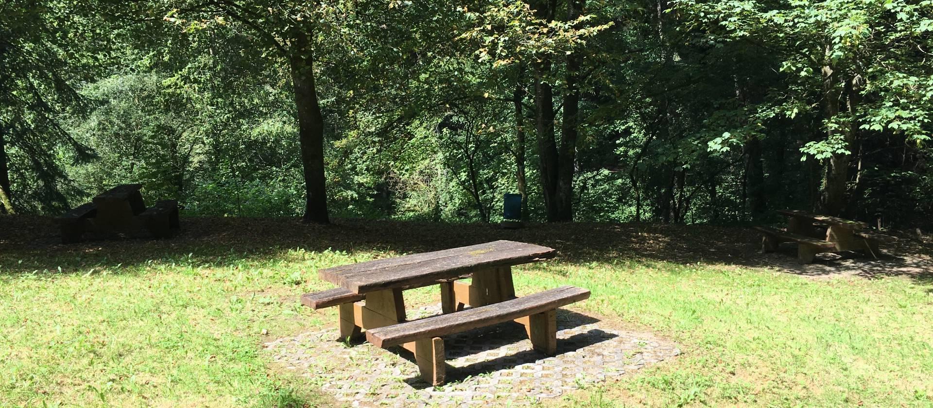 haller picknick 3