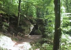 nature hohlay