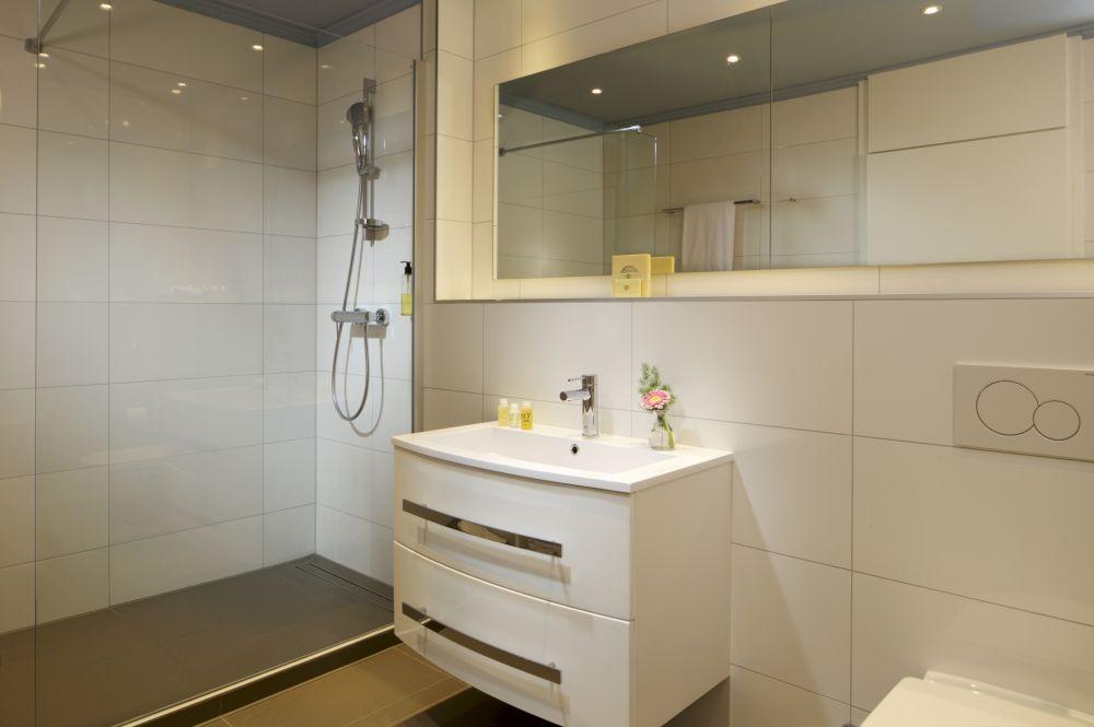 bv suite bathroom 108