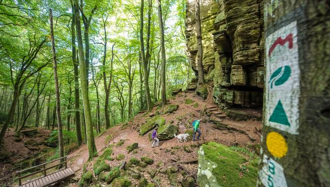 Mullerthal Trail Season Opening