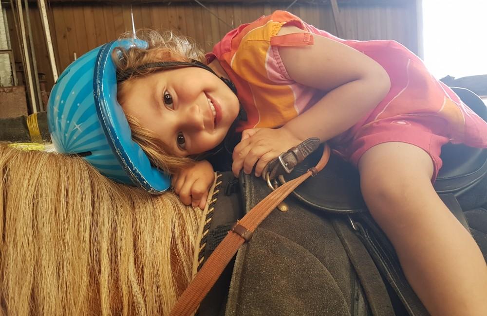 reckange iesel an ponyhaff op der weschheck 3