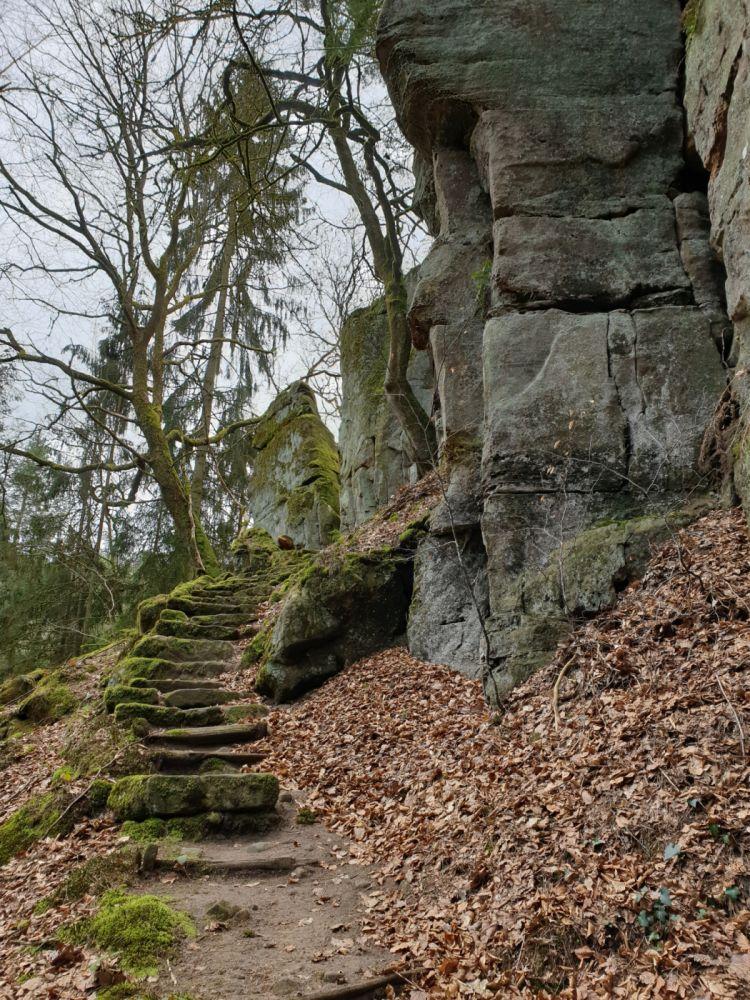 local hiking trail w5 02