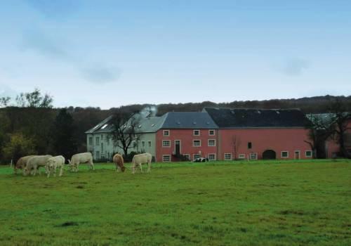 steinfort ferme grass commune de steinfort 1.v2