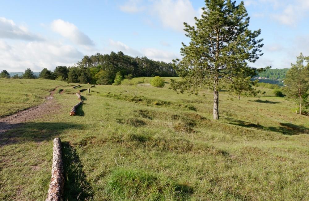 naturreservat aarnescht niederanven 6 c ortco