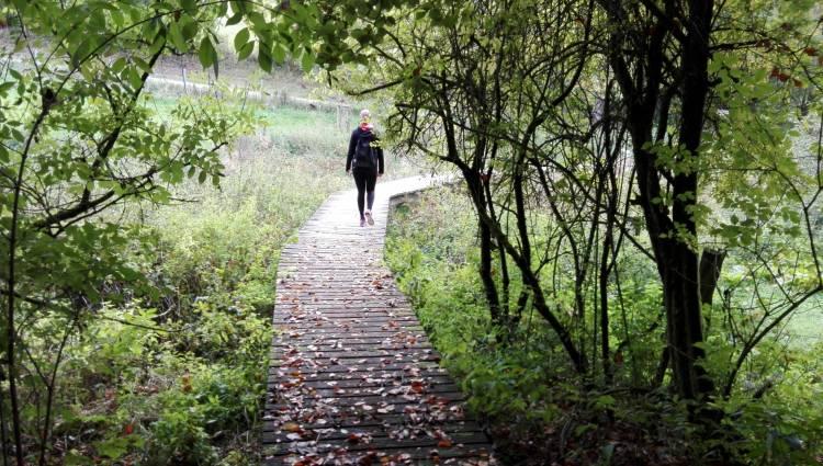 rindschleiden meditationsweg ortco 98