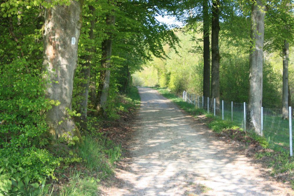 wanderweg e8 3