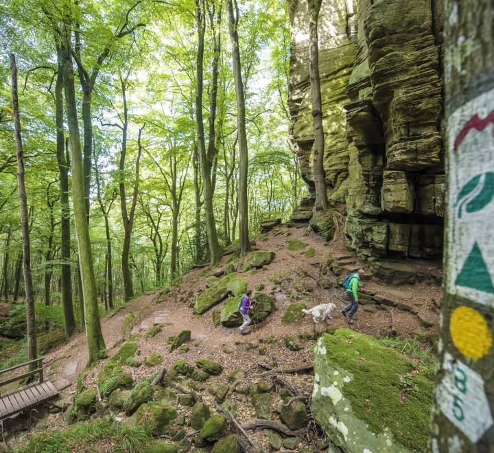 mullerthal trail pulsa pictures