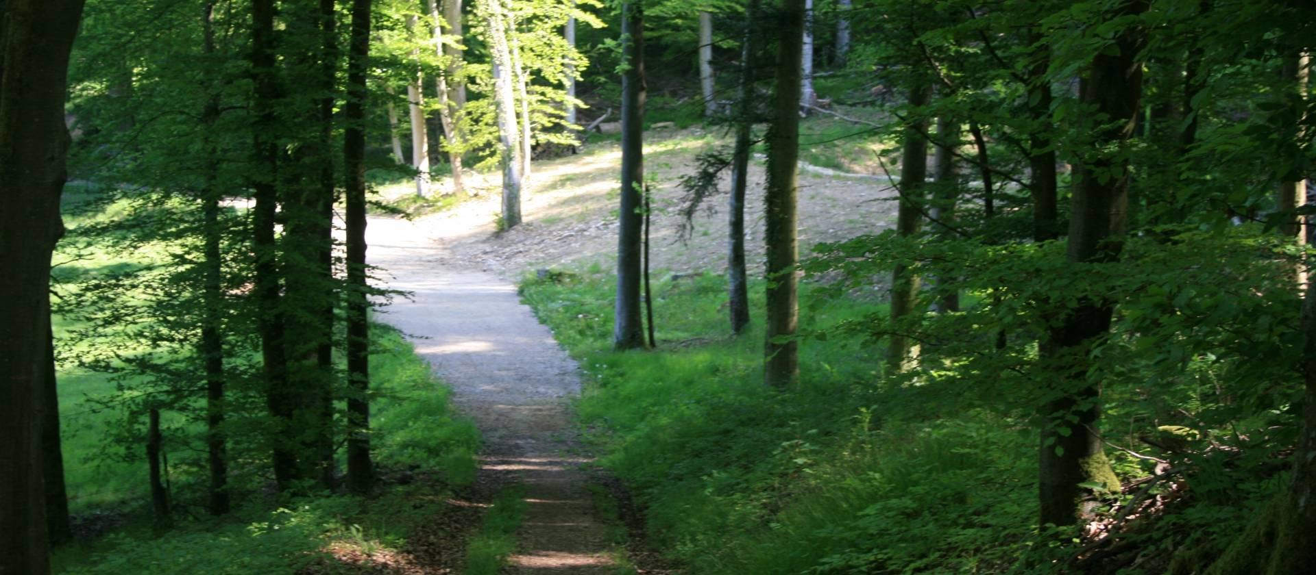 wanderweg m4 4