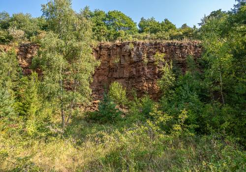 reserve naturelle haard copyright pulsa pictures ort sud 36 72 dpi