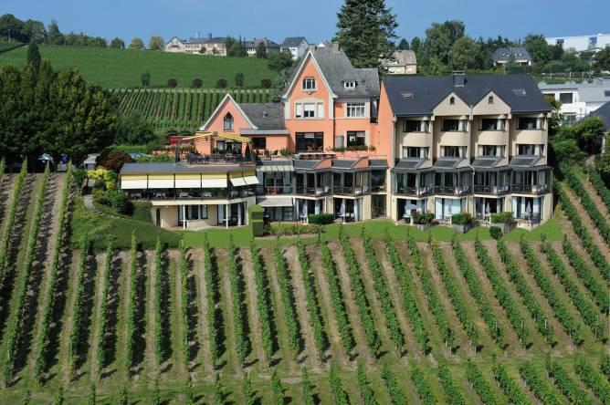 Hotel Des Vignes - Restaurant Du Pressoir